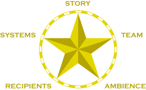 STARS Customer Experience Model